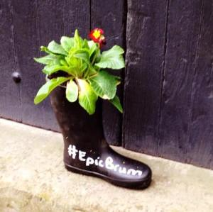 """Wellington boot with a plant in it and """"#EpicBrum"""" painted on it"""